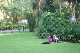 The lawns are for lovers too!
