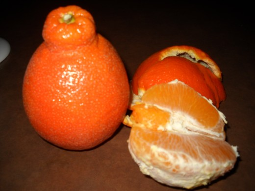 Fruit, Sumo orange