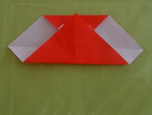 Now bring the bottom flap of the paper up to the top edge and press down on the bottom edge to make a fold.