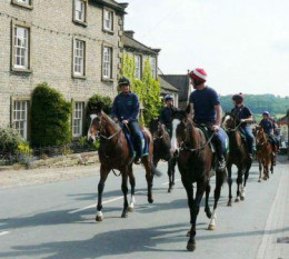 The other thing Middleham is famed for is its racing stables. These are headed for the gallops beside the road up to Coverdale. There are currently 15 racing stables here, and on Good Fridays they hold a collective annual open day.