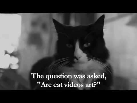 Henri, the feline philosopher, asks some very though provoking questions.