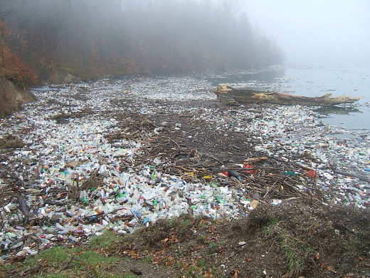 A potentially beautiful beach scene spoiled by plastic waste