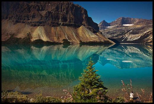 Enjoying Nature's beauty from Eduardo Tavares flickr.com