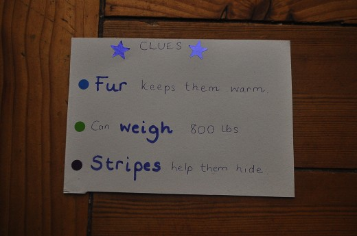 I wrote three clues or facts about the animal on the reverse side of the naming card