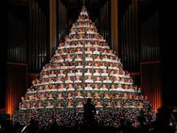 Have you ever experienced the beauty of a performance of a Living Christmas Tree?