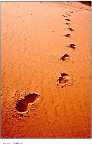 Desert from Moyan Brenn flickr.com