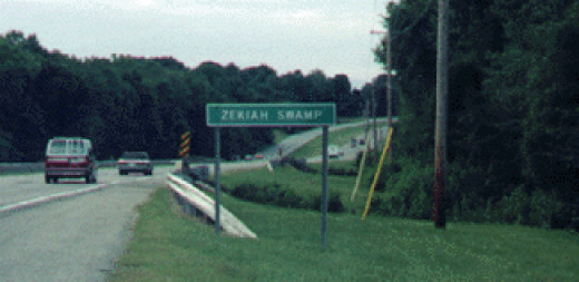 My visit to Zekiah Swamp area in August 2001. My ancestors lived in this area in the late 17th and most of the 18th Centuries.
