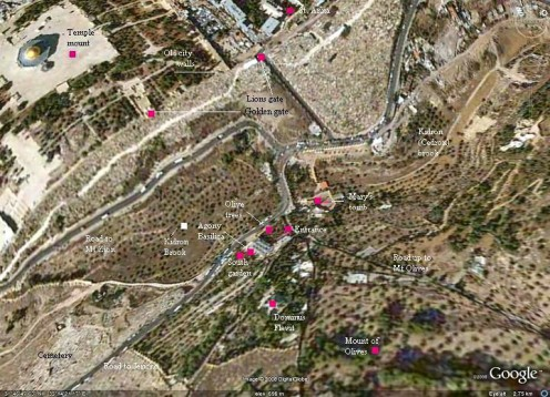 Google map of Road to Jerusalem (the narrow black line on the right side shown as Road to Mount Olive) Notice how it reaches the  lions gate on the Jerusalem city wall.