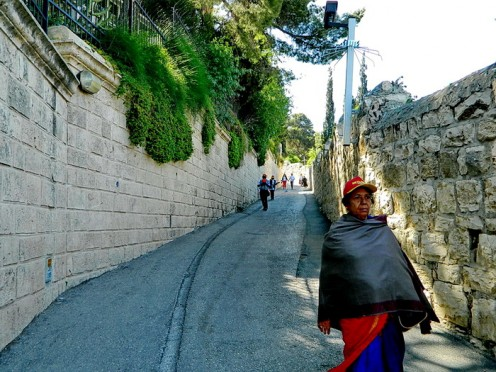Road to Jerusalem, steeping down from olive mountain.