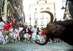 http://www.gungeralv.org/notes/archives/images/000472.running-bulls