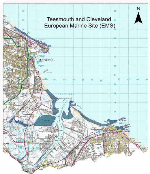 Map of Teesmouth showing the conservancy areas around the north and south banks of the Tees