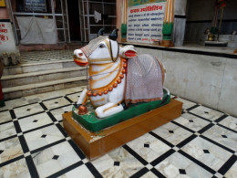 The Nandi Bull of the temple
