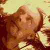 wilaps profile image