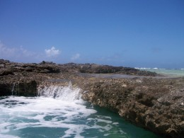 Part of the outlying reef