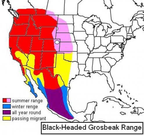 This image shows the Black-headed Grosbeak range.