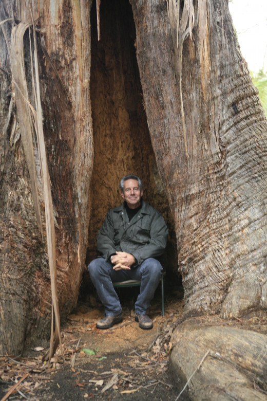 rod in Arl's wizard tree in his valley. (our valley yet to be discovered)