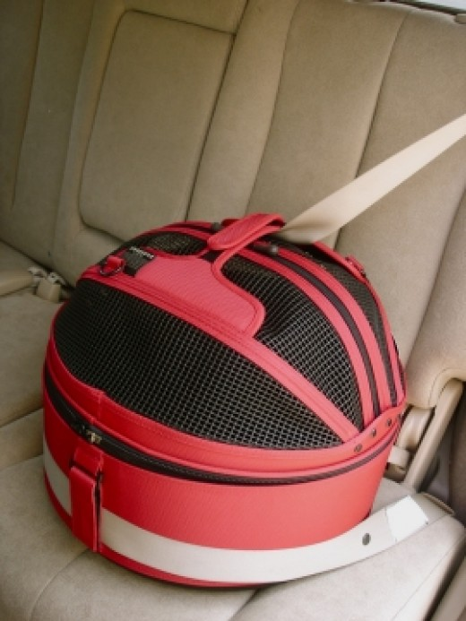 The Sleepypod secures easily with the safety belt of any vehicle.