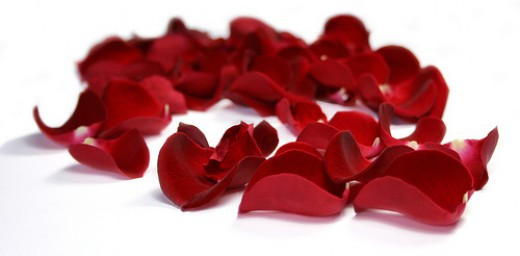 Rose petals in red or pink make an excellent addition to any Valentine's Day table.