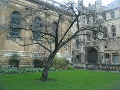 Choose Beautiful and Historic Cambridge for UK and European Vacations