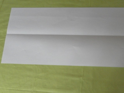 Unfold the paper. Take note of the horizontal line!