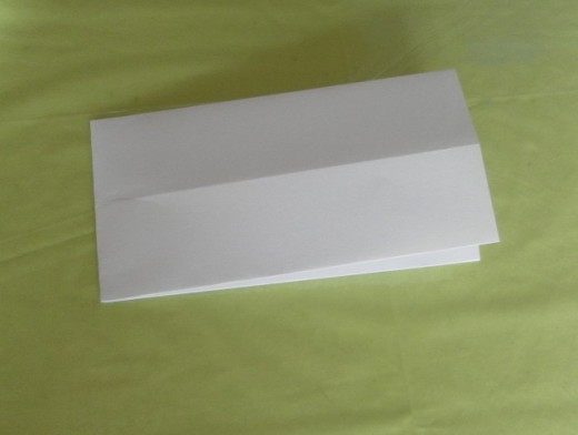 Fold the paper in half from left to right to make a vertical crease line.
