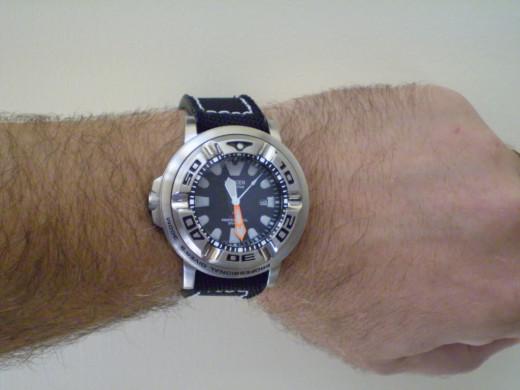 Citizen Men's Eco-Drive Professional Diver Black Rubber Strap Watch