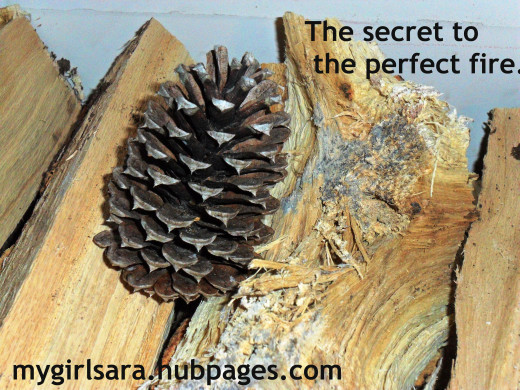 Pine cones and seasoned wood are the secret to a perfect fire.