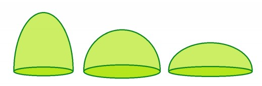 Prolate spheroid dome, hemispherical dome, and oblate spheroid dome.