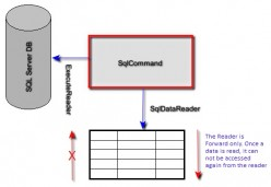 SQL ExecuteReader example in C#
