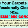 Make Your Carpets Look Professionally Cleaned