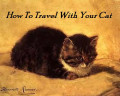 Tips For Traveling In A Car With Your Cat