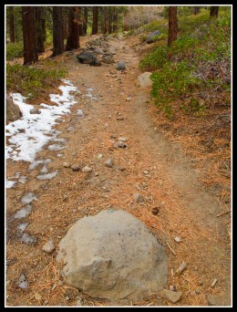 The trail just before the first switchback
