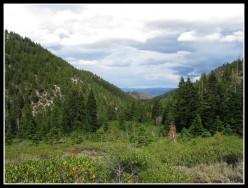 Hiking Reno/Lake Tahoe: Jones-Whites Creek Loop