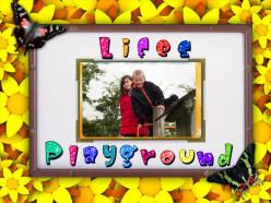 Life's Playground.