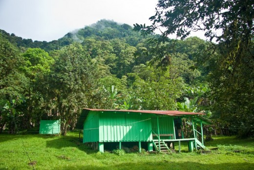 Small and cozy, and in a very remote place where people are free from greed, and totally in love with nature!