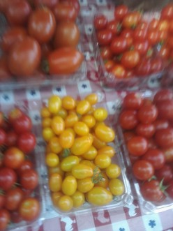 Yellow Pear Tomatoes at local farmers market.  Tomatoes up for sale to farmer market customers.