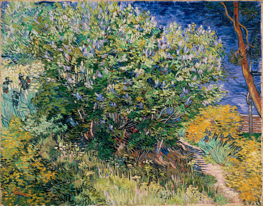 Vincent Willem van Gogh (1853-1890) painted Lilac Bush (Lilacs) in May 1889 in Saint-Rémy.