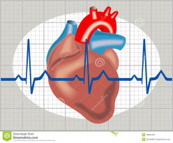 Different Sinus Arrhythmias And Pathological Beats