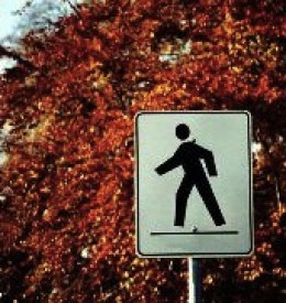 People on the spectrum may focus on things that most people ignore like street signs.