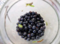 Gluten Free Wild Blueberry Coffee Cake Recipe