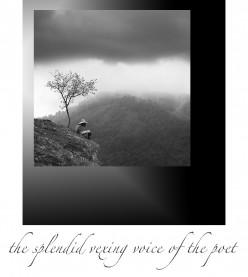 The Splendid Vexing Voice of the Poet