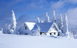 How to Overcome the Winter Blues
