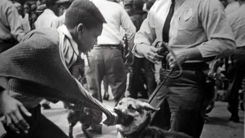 Civil rights protester attacked by police dogs, 1963