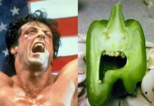 """The Rocky Pepper"""