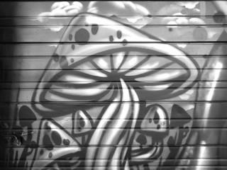 "The infamous ""mushroom"""