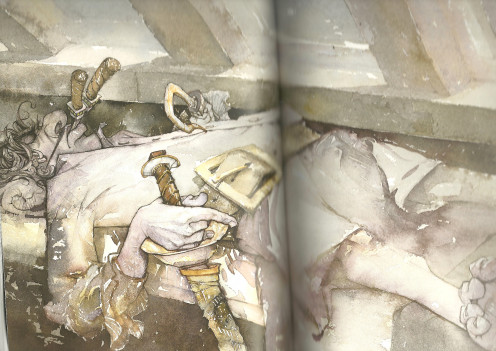 llustrated by David Christiana 'Fairy Durst and the Quest for the Egg' (Giant Sleeping)