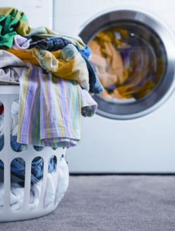 Why You Should Choose Biological Washing Powder