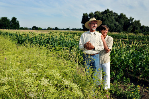 This farmer and his wife are optimistic about the future; why else would they be staring into the sun, smiling?