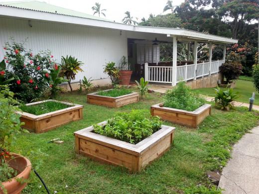 Herb Garden behind Plantation Gardens Restaurant