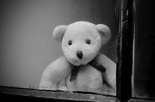 Black and white teddy bear.